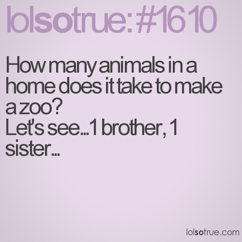 Quotes About Brothers And Sisters Tumblr Brothers quote ...